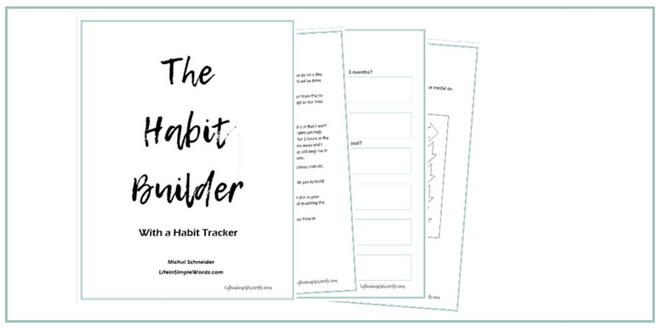 The Habit Builder